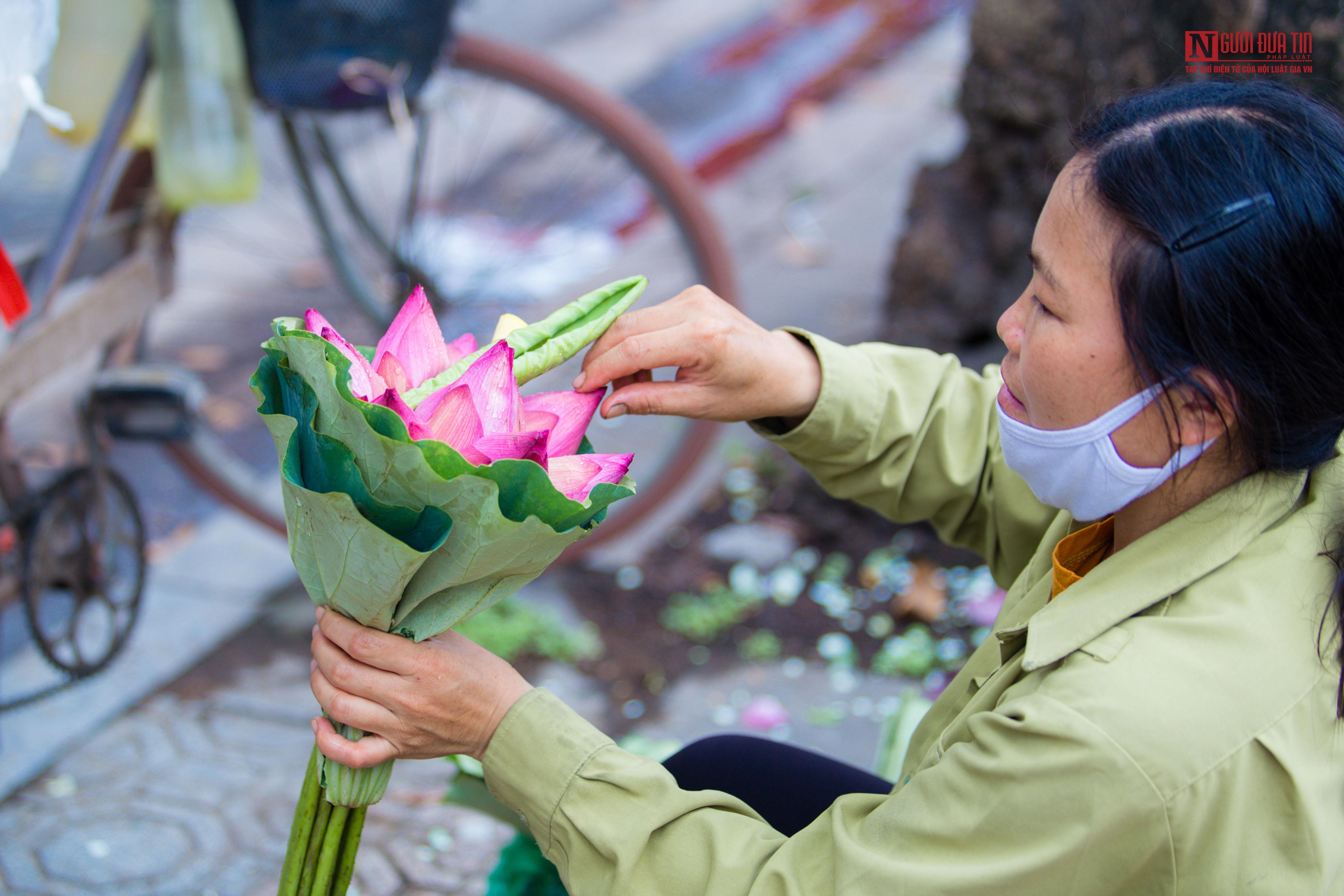 Hoa sen đầu mùa rong ruổi khắp phố phường Hà Nội Ảnh 6