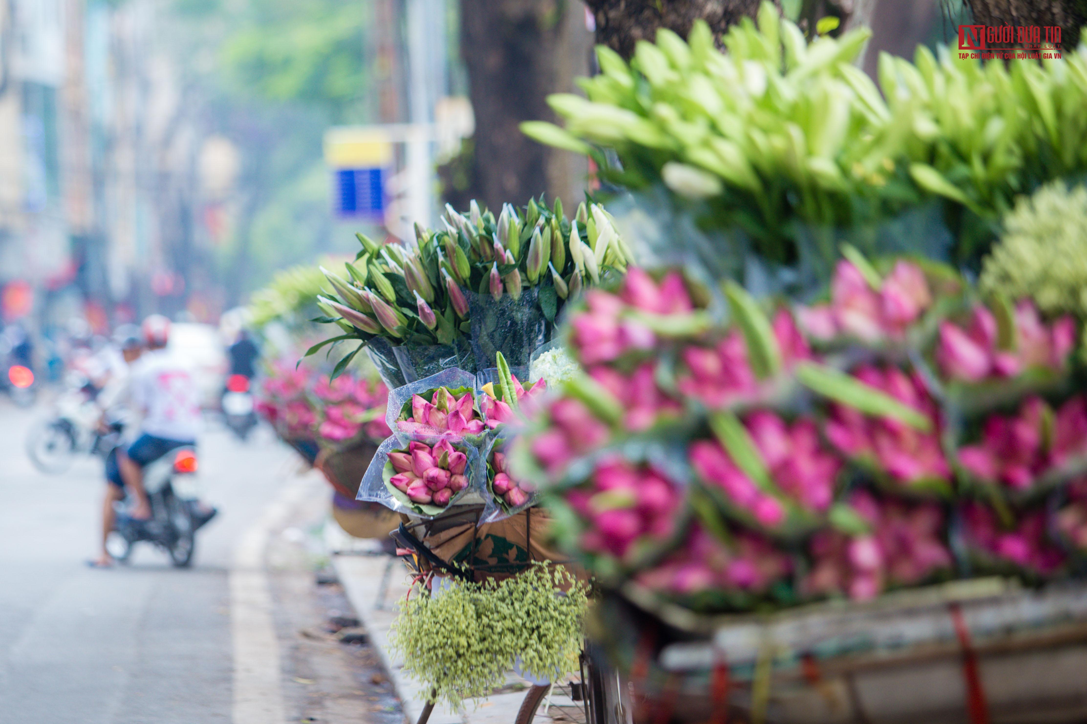 Hoa sen đầu mùa rong ruổi khắp phố phường Hà Nội Ảnh 4