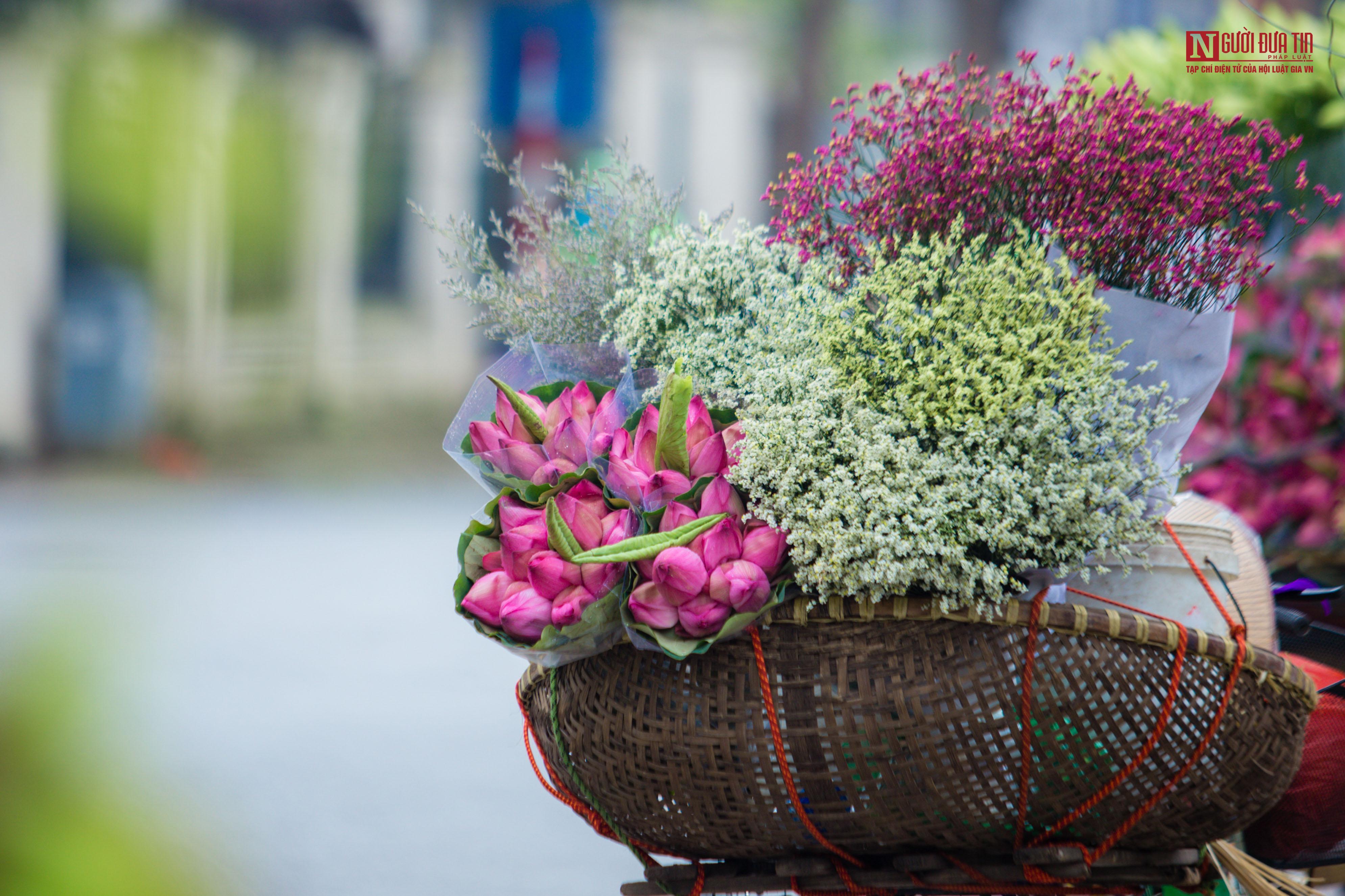 Hoa sen đầu mùa rong ruổi khắp phố phường Hà Nội Ảnh 1