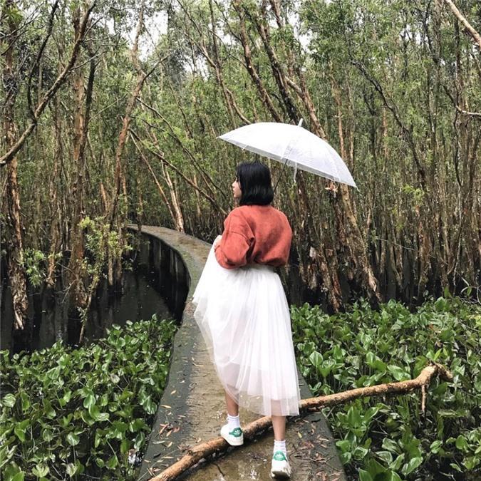 3 cánh rừng nguyên sinh miền Tây nổi tiếng trong giới xê dịch Ảnh 8