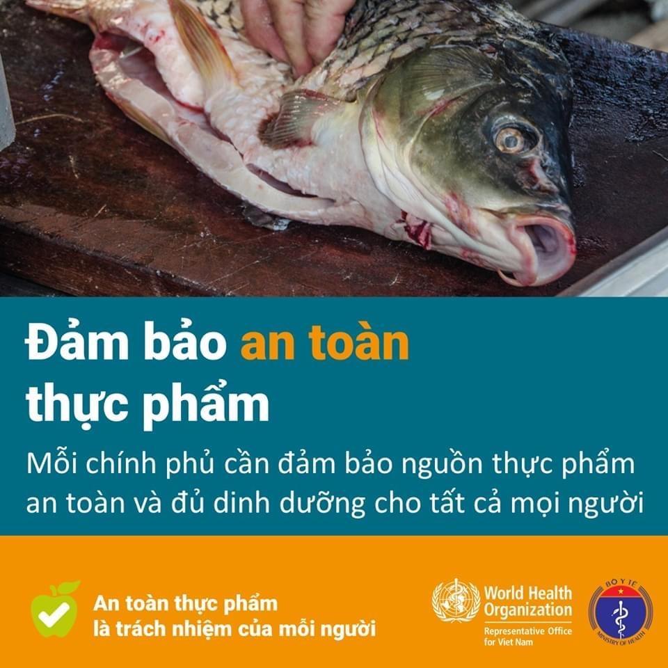 Các quy tắc bảo đảm an toàn thực phẩm nhân Ngày An toàn thực phẩm thế giới (7-6) Ảnh 10