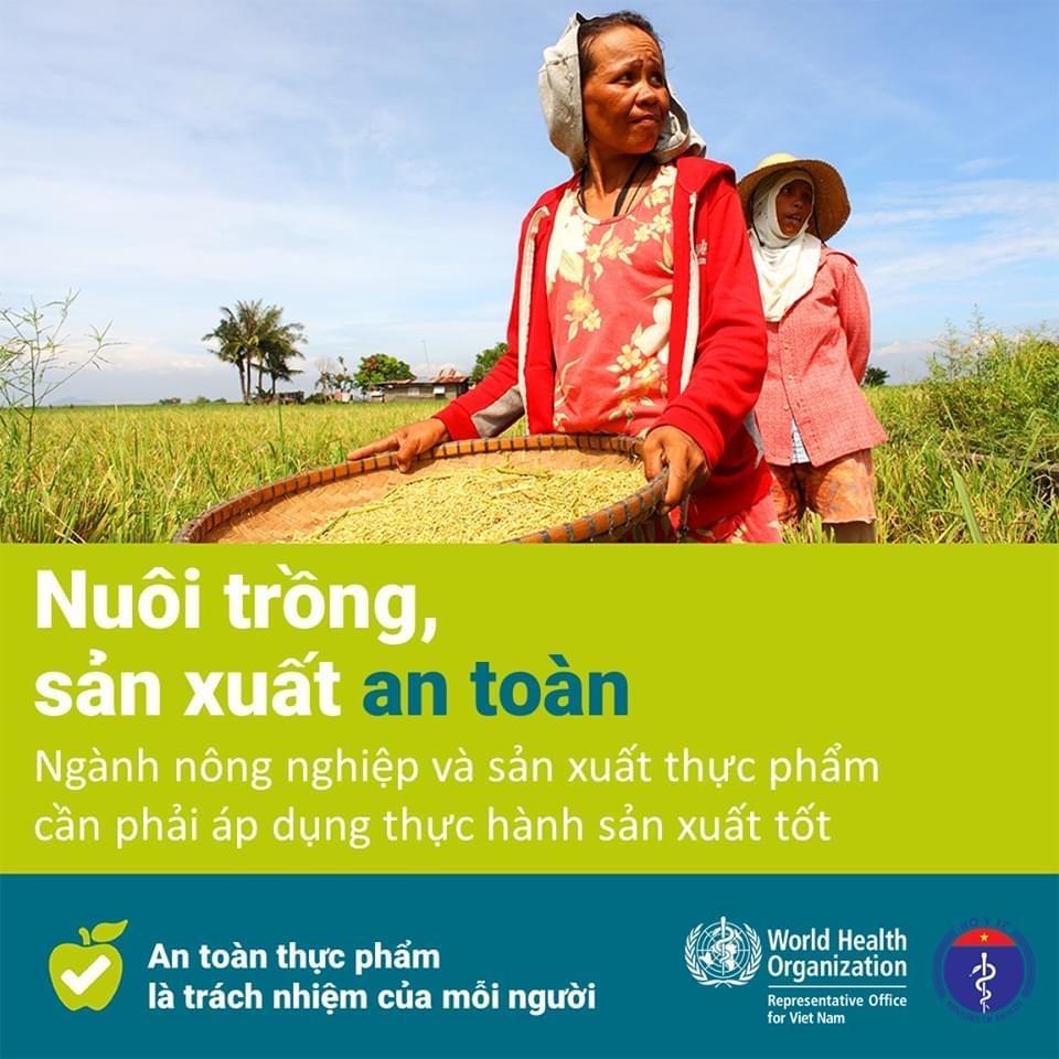 Các quy tắc bảo đảm an toàn thực phẩm nhân Ngày An toàn thực phẩm thế giới (7-6) Ảnh 11