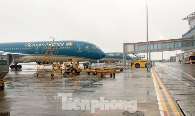 Sắp hết tiền, Vietnam Airlines xin 'giải cứu' Ảnh 1