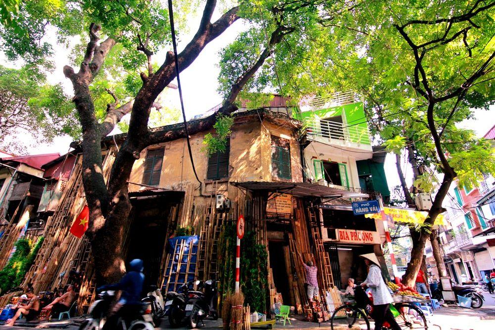Image result for hà nội mùa thu phố cổ