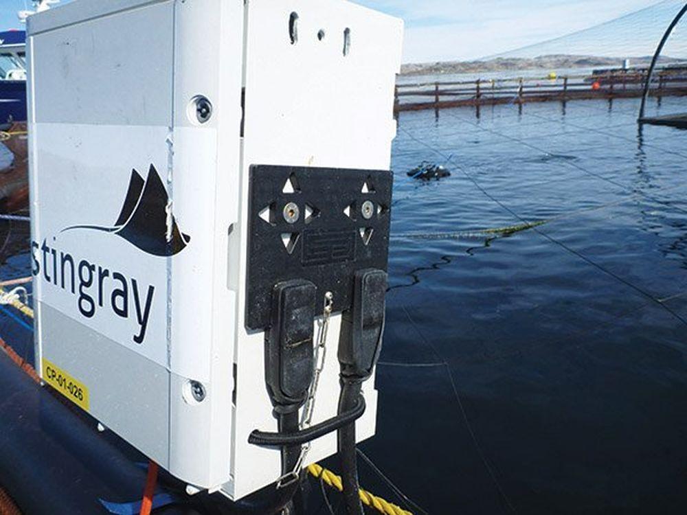 Công cụ của công ty Stingray có thể tự động bắn tia laser vào rận biển để  tiêu diệt chúng chỉ trong vài mili giây.