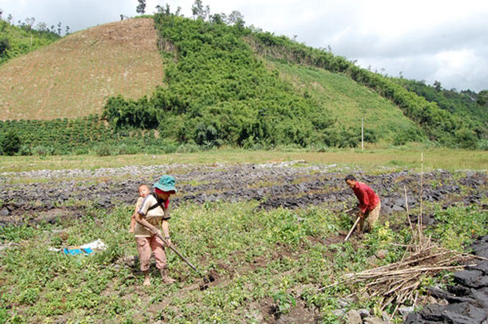 Đây là thông tin được đưa ra tại Hội nghị về xây dựng NTM cấp thôn, bản khó  khăn gắn với giảm nghèo bền vững do Bộ Nông nghiệp và Phát triển ...