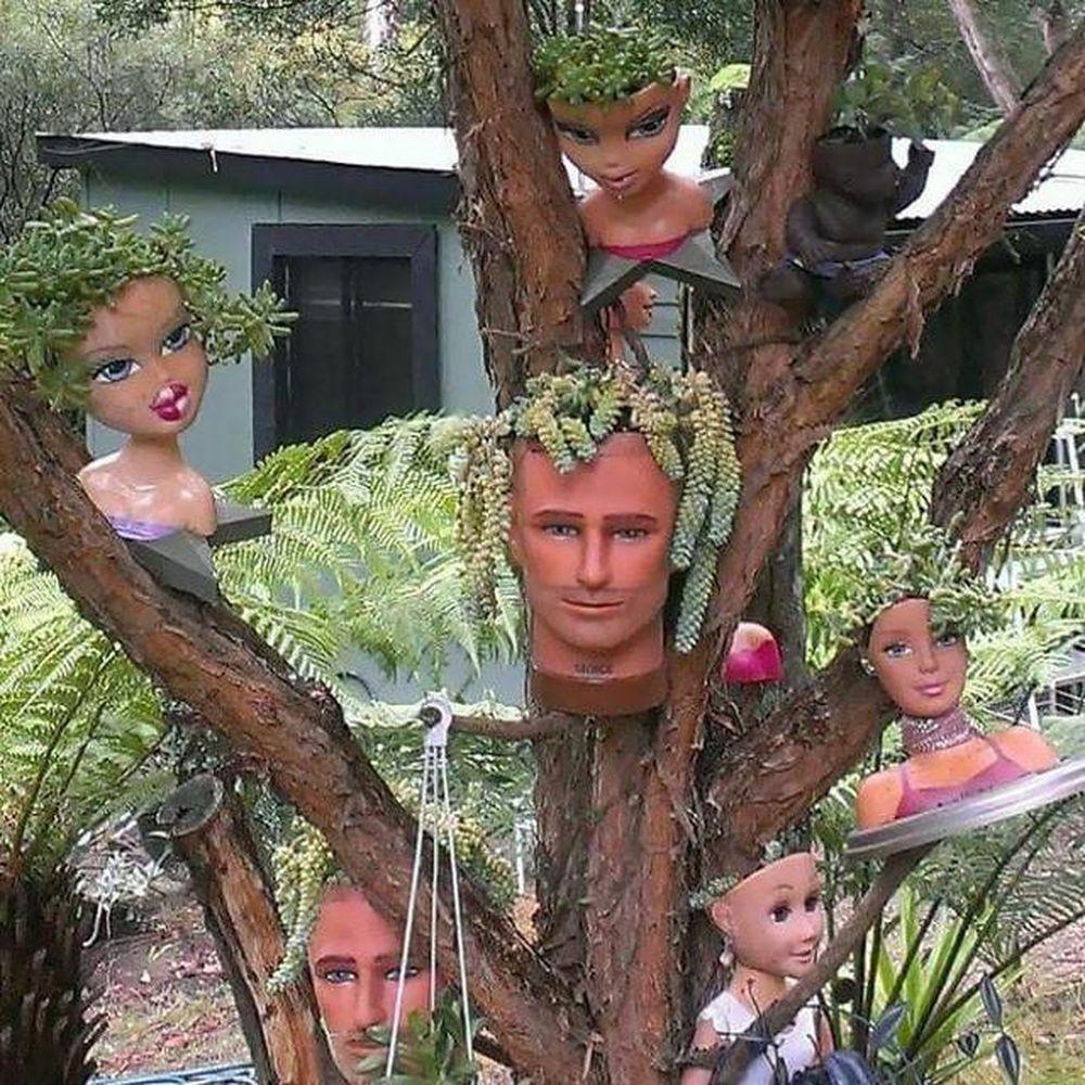 Trồng cây trong... búp bê: Kiểu trang trí nhà cực độc, không đụng hàng -  Báo Kiến Thức