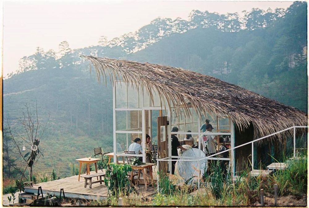 Image result for 1. The Wilder Nest – homestay giữa rừng thông