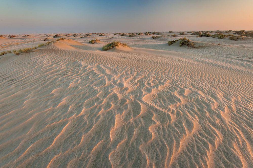 Kết quả hình ảnh cho Sa mạc biển Mesaieed.