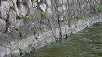 Cận cảnh Hồ Tây sau khi xả hơn 1 triệu m3 nước ra sông Tô Lịch