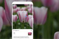 Cuối cùng Google cũng đưa tính năng tìm kiếm Lens lên iPhone