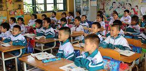 Sắp xếp, tổ chức bộ máy ở Nam Định