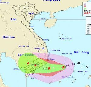 Khẩn trương triển khai các biện pháp phòng tránh bão số 9
