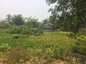 Thừa Thiên Huế: Người dân lỡ dở chuyện nhà cửa vì xã cấp đất trái thẩm quyền