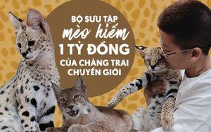 Chàng trai chuyển giới và bộ sưu tập mèo hiếm 1 tỉ đồng: '7 lần bị từ chối vì quan niệm người Việt ăn thịt chó mèo'