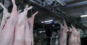 Dự trữ, cấp đông thịt lợn sạch - Giải pháp bình ổn thị trường thực phẩm
