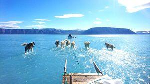 Cảnh báo năm tai họa 2019 tại Bắc cực
