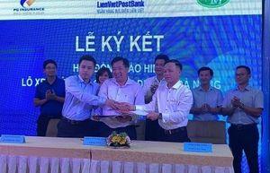 LienVietPostBank phối hợp cung cấp dịch vụ bảo hiểm xe buýt tại Đà Nẵng