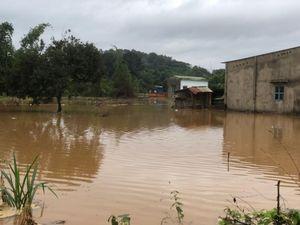 Thủy điện xả lũ, Đồng Nai gấp rút di dời hàng ngàn hộ dân