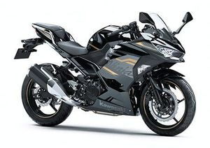 Kawasaki Ninja 250 2020 ra mắt với giá từ 142 triệu đồng