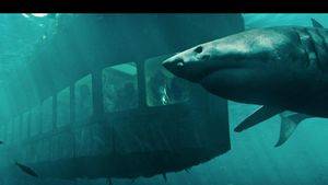 'Hung thần đại dương': Phim kinh dị về cá mập trở lại