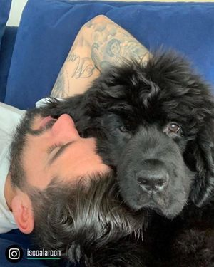 Isco nuôi 'Messi' và các sao bóng đá mê cún cưng