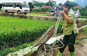 Xây dựng nông thôn ở thị xã Sơn Tây, 'thay áo mới' từ những xuất phát điểm thấp - Kỳ 1: Vượt khó xây dựng những tiêu chí bền vững
