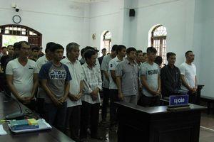 Trùm gỗ lậu Phượng 'râu' bị tuyên 8 năm 6 tháng tù