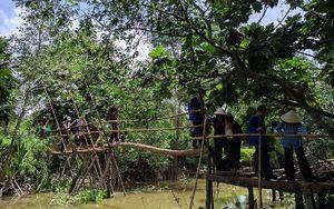 Quyến rũ miệt vườn Cồn Sơn