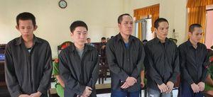 Băng trộm, cướp lộng hành ở miền Tây chia nhau 56 năm tù