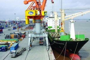 'Trĩu vai' vì chi phí vận tải biển