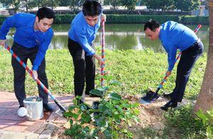 Đoàn viên thanh niên cụm Bắc Trung Bộ hưởng ứng 'Chủ Nhật xanh' tại Huế