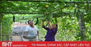 Xã vùng biển Hà Tĩnh làm giàu từ vườn mẫu