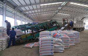 Supe Lâm Thao đẩy mạnh sản xuất, tiêu thụ sản phẩm cuối năm 2019