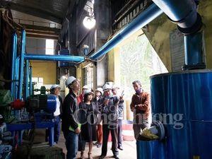 Ngành Công Thương Đà Nẵng: Hỗ trợ doanh nghiệp sản xuất sạch hơn