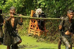 Độc đáo lễ hội rước chó ở Quý Châu, Trung Quốc
