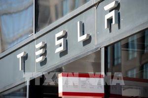 Tesla có thể nhận được hỗ trợ tài chính cho nhà máy xây dựng tại Đức