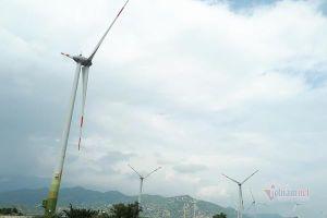 Chạy đua làm điện gió, bán giá cao ngất hơn 2.000 đồng/kWh