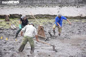 Khai quật bãi cọc mới phát lộ ở Hải Phòng nghi liên quan trận Bạch Đằng