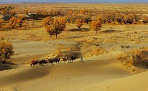Huyền bí thế giới cổ đại bên dưới sa mạc Trung Quốc