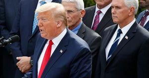 Tuyên bố tình trạng khẩn cấp quốc gia vì COVID-19, Tổng thống Trump hướng tới điều gì?