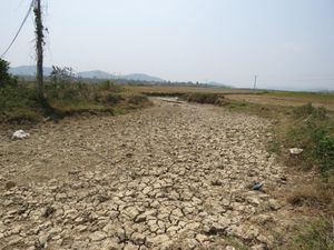 Người dân Miền Trung Tây Nguyên được hưởng lợi từ dự án 30,2 triệu đô của UNDP