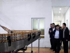Bộ trưởng Bộ KH&ĐT đến thăm Tập đoàn Dược Bảo Châu