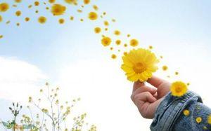 Làm sao để hạnh phúc?