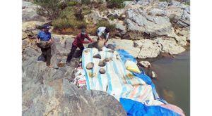 Hạn nặng do thủy điện tích nước tại huyện Kon Rẫy (Kon Tum)