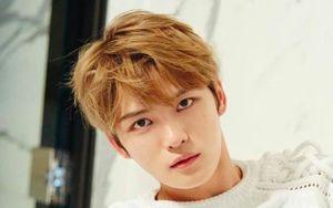 Cư dân Nhật bầu chọn sao K-pop đẹp trai nhất 'Thánh nói dối' đứng đầu - Nam Joo Hyuk về chung nhà với 'yêu tinh' Gong Yoo