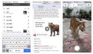 Hướng dẫn cách xem ảnh 3D động vật bằng Google 3D animals và AR Object