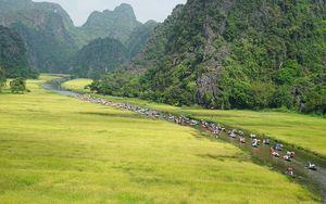 'Sắc vàng Tam Cốc - Tràng An' khởi động ấn tượng trong Tuần du lịch Ninh Bình năm 2020