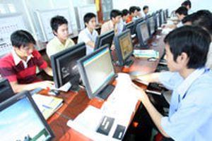 Ngành nào nhiều cơ hội làm việc ở nước ngoài?