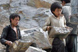 Hãy chấm dứt lao động trẻ em